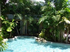 Tropical Pool (Heated in Winter)  - Palm Cove Tropic Apartments