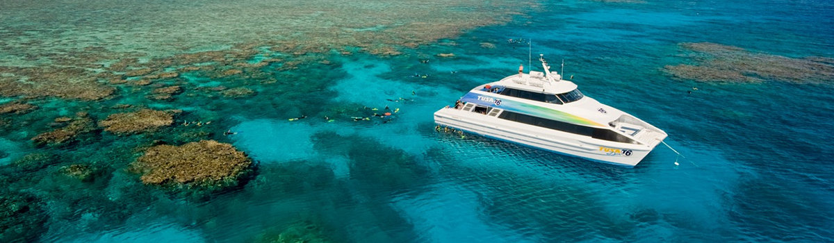 Cairns Snorkel & Dive Tours