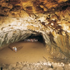 Undara Lava Tube tour on private charter flight from Cairns
