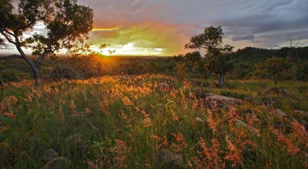 Undara National Park at Sunset in Queensland Australia