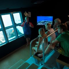 Great Barrier Reef Tour | Underwater observatory | Great Barrier Reef Tour