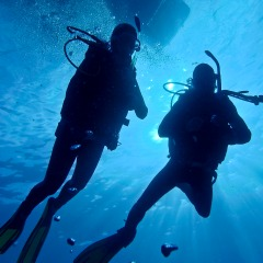 Up to 5 Introductory Dives | Overnight Reef Trip | Sail The Great Barrier Reef