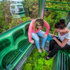 Upgrade to the Diamond View open perspex Gondolas on your way to Kuranda Village with Skyrail