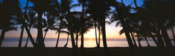 View from Nu Nu Restaurant at Sunrise - Alamanda Resort Palm Cove
