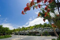 Central Location on Macrossan Street - Coconut Grove Apartments Port Douglas