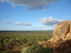 Views across the landscape at sunset at Undara Lava Tubes