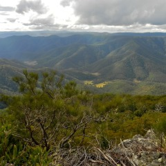 Views of the Rugged Far North - 3 Day Cooktown 4WD Tour