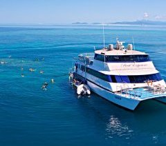 Great Barrier Reef Day Tours - VIP Captains Club