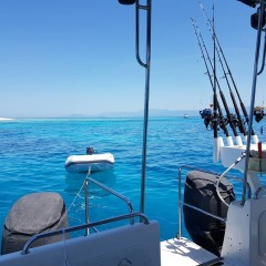 Cairns Fishing Boats - Visit a tropical sand cay on the Great Barrier Reef