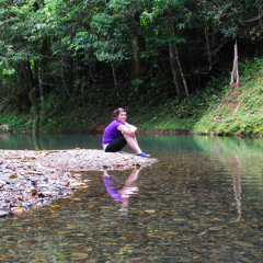 Visit Beautiful and Peaceful Locations In The Daintree | Full Day Tour | Small Group | Max 8 Guests