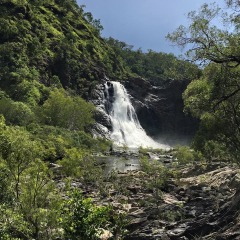 Visit Bloomfield Falls | Private Charter Full Day Tour | Ex Port Douglas Tropical North Queensland