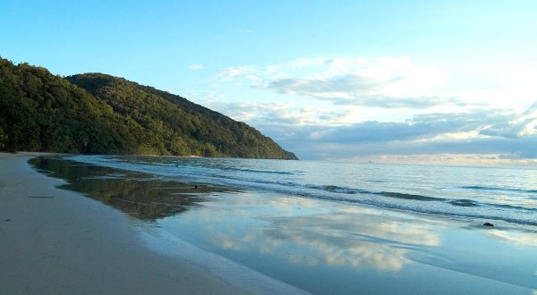 Visit Cape Tribulation From Port Douglas In Tropical North Queensland | 1 DAy Tour