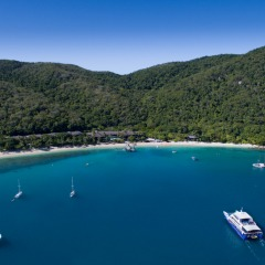 Visit Fitzroy Island From Cairns In Tropical North Queensland
