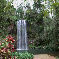 Visit scenic waterfalls on the Atherton Tablelands