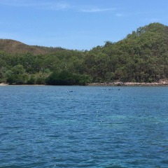 SV-INO Private Charter Boat Tropical North Queensland