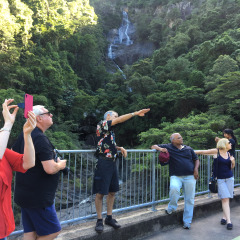 Visit the epic Barron Gorge and take in the view from the bridge