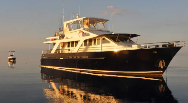 Visit the Great Barrier Reef in style | 70 ft Private Motor Yacht