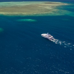 Visit The Outer Barrier Reef Daily | Dive & Snorkel Trip | From Cairns Tropical North Queensland