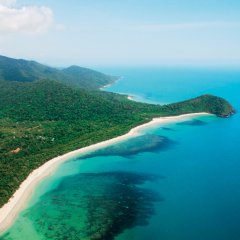 Visit the scenic lookouts at Cape Tribulation Beaches