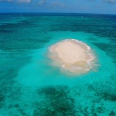 Vlassoff Cay, Middle Cay Upolu Cay, Michealmas Cay | Great Barrier Reef | Australia