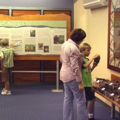 Walk around the parks information areas and learn about the wildlife