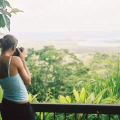 Walk the elevated boardwalks to the scenic lookouts of the Daintree & Cape Tribulation rainforests