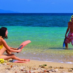 Wander into the safe shallow waters from the soft sand on Low Island on Australia's Great Barrier Reef from Port Douglas