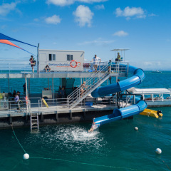 Great Barrier Reef Tour | Spaghetti Waterslide