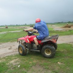 We have big ATV Quad bikes and smaller quad bikes for kids on our Cairns tours