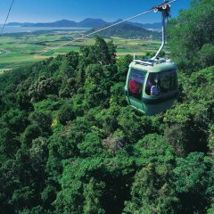 We will book your groups on Skyrail Gondola Cableway