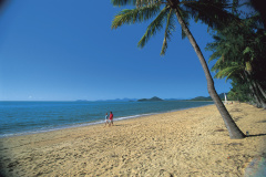 Wheelchair Accessible Palm Cove