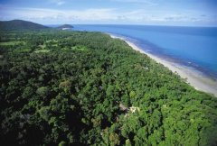 Where the Rainforest meets the Sea - Ferntree Rainforest Resort Cape Tribulation