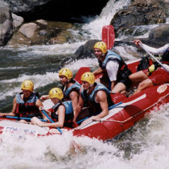 White Water Rafting Half Day From Cairns