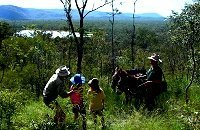Wildlife Walks at Mareeba Wetlands