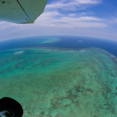 Window Seats Guaranteed For All Pasengers | Barrier Reef & Tropical North Queensland Coastline Scenic Flights Ex Cairns