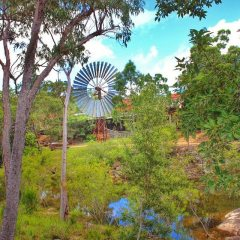 Windwill At Herberton Historical Village | Private Cairns Tablelands Tour