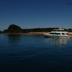 Your boat that takes you on the magical ride to the beautiful Frankland Islands