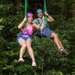 Zip Lining Through The Rainforest In Cape Tribulation | Stay 2 Days And Make The Most Of Your Adventurous Tropical North Queensland Stay